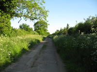 Start of Brackley Lane, Abthorpe